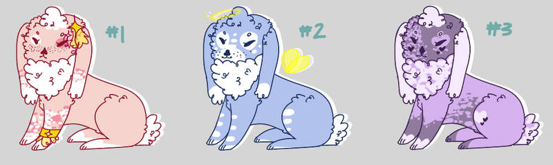 USD ADOPTS 1 || CURLY LOP EARS - all open!