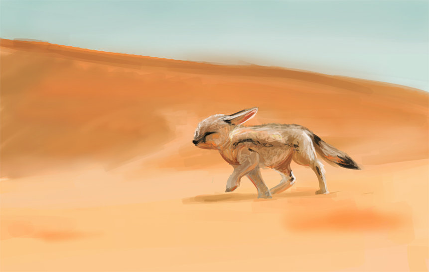 Foxes in the desert - photo#24