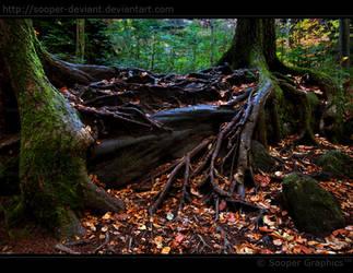 Tough Roots 0570 by Sooper-Deviant