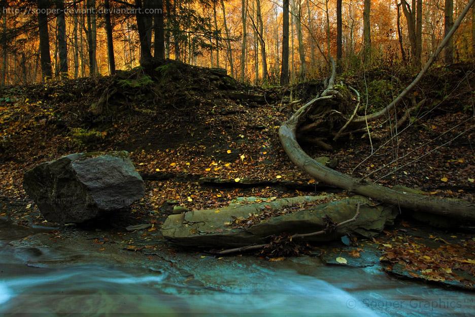 Autumn 8293P by Sooper-Deviant