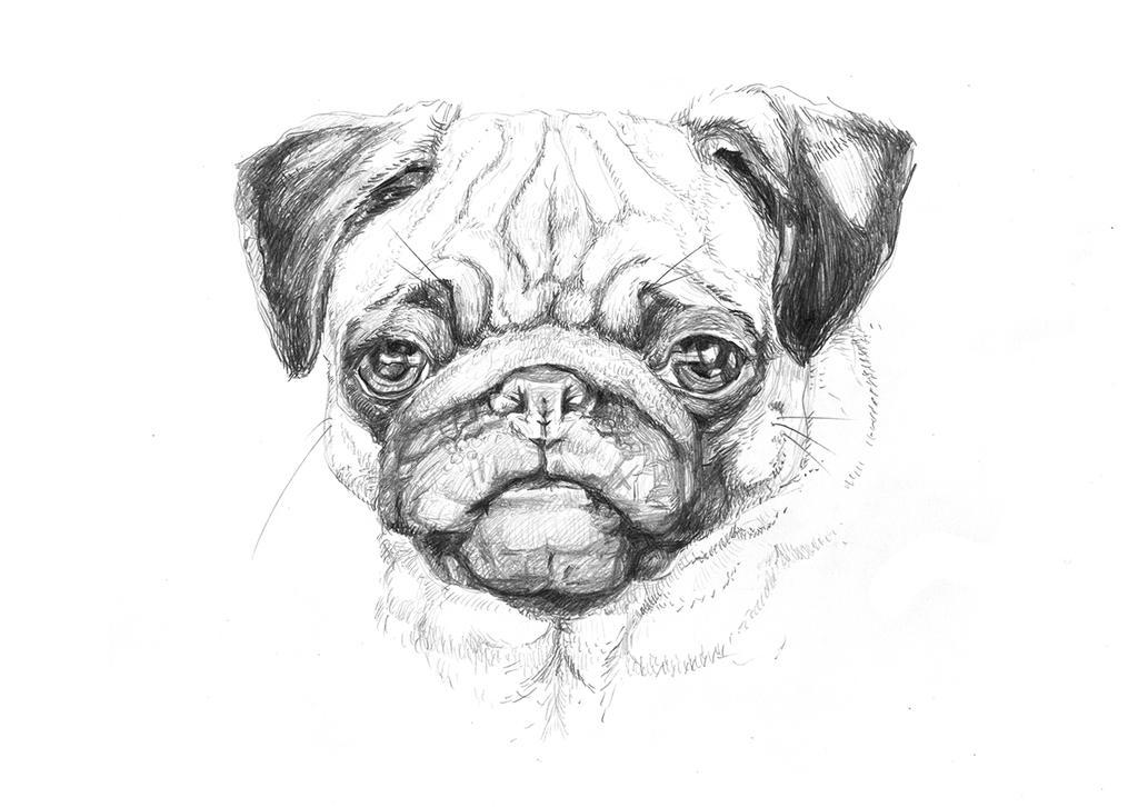 Dog3 by LittleTelli