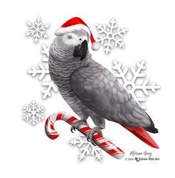 Santa Grey