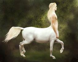 Centaur by feverpaint