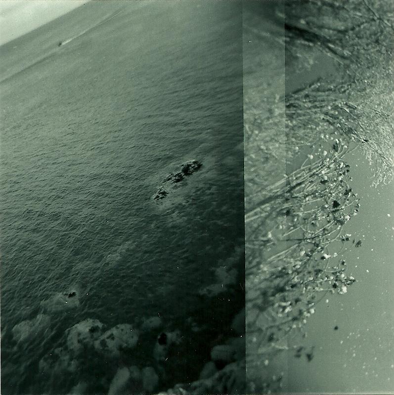 Ocean by fire-fish