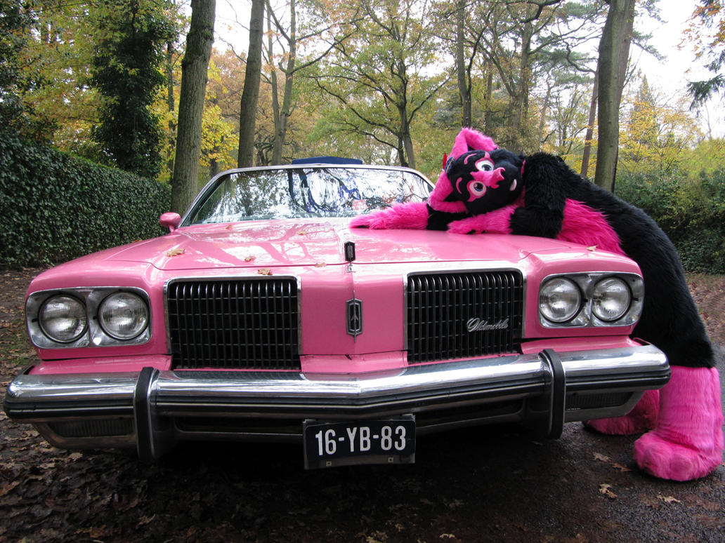 Chevrolet Love by FurryFursuitMaker
