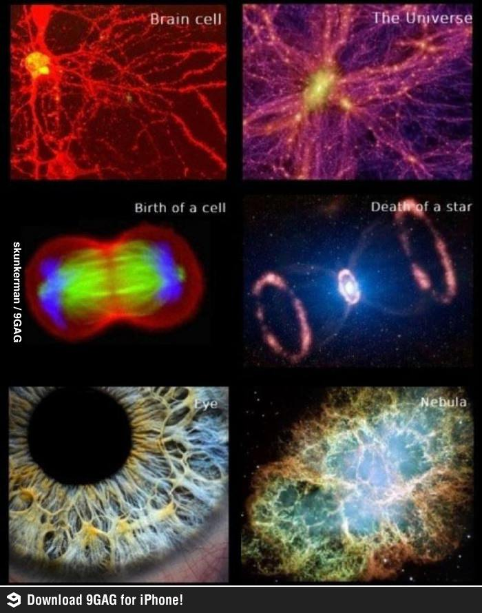 Image result for THE UNIVERSE INSIDE YOU