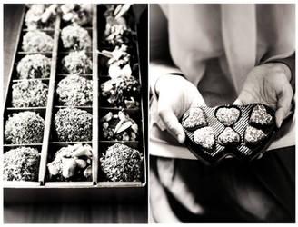 Chocolates by sasQuat-ch