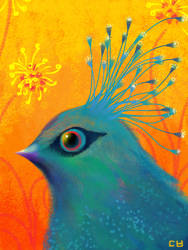 Victoria Crowned Pigeon by pikaole