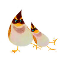 yellow-throated buntings by pikaole