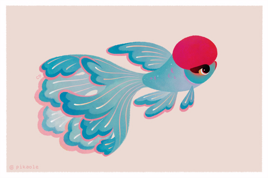 Red cap oranda 2