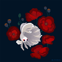 Bettas and Poppies