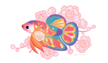 Koi betta by pikaole