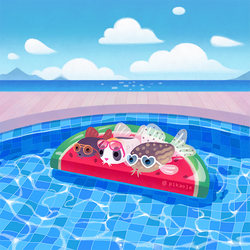 Cory cats in the swimming pool