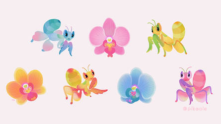 Orchid Mantis by pikaole