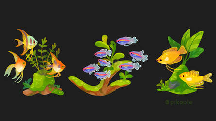 Fresh water fish and plants 1