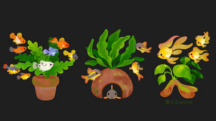 Fresh water fish and plants 2