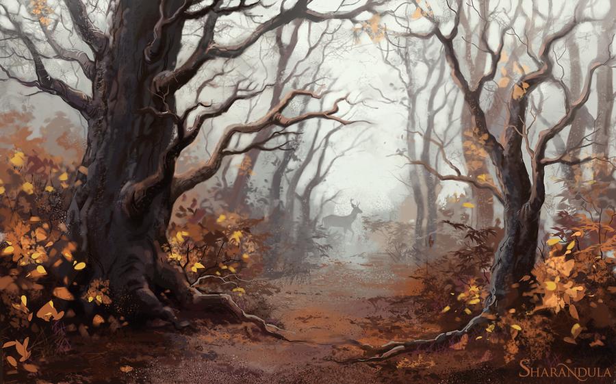 forest by sharandula