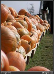 orange row 01 by Sharpeshots
