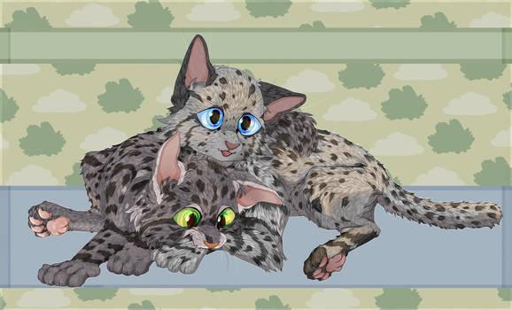 Ferncloud and Ashfur as kittens
