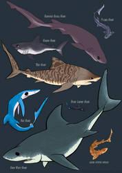 Shark Week 2014 by Midsea