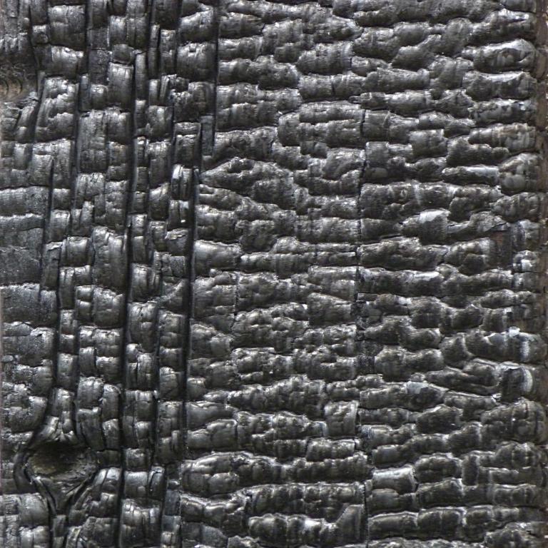 Texture-WoodCharred