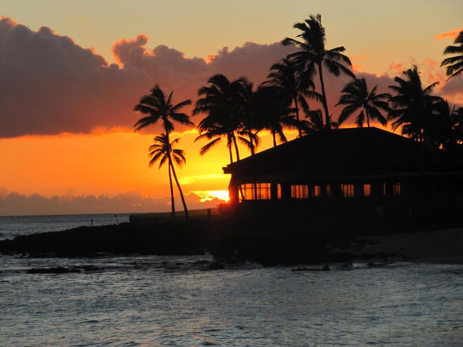 Hawaiian Sunset by cougar334