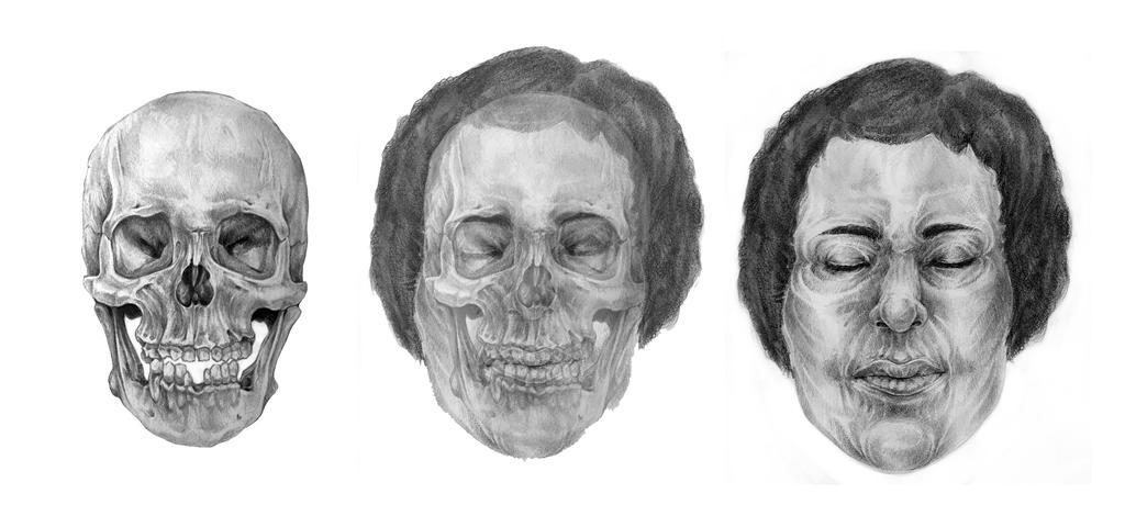 Facial reconstruction courses fucked