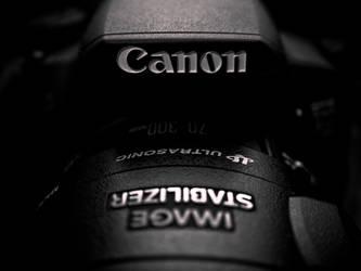 2 Canon 70 300 by necrodh