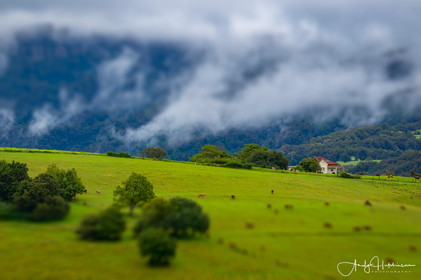 Jamberoo by andyhutchinson