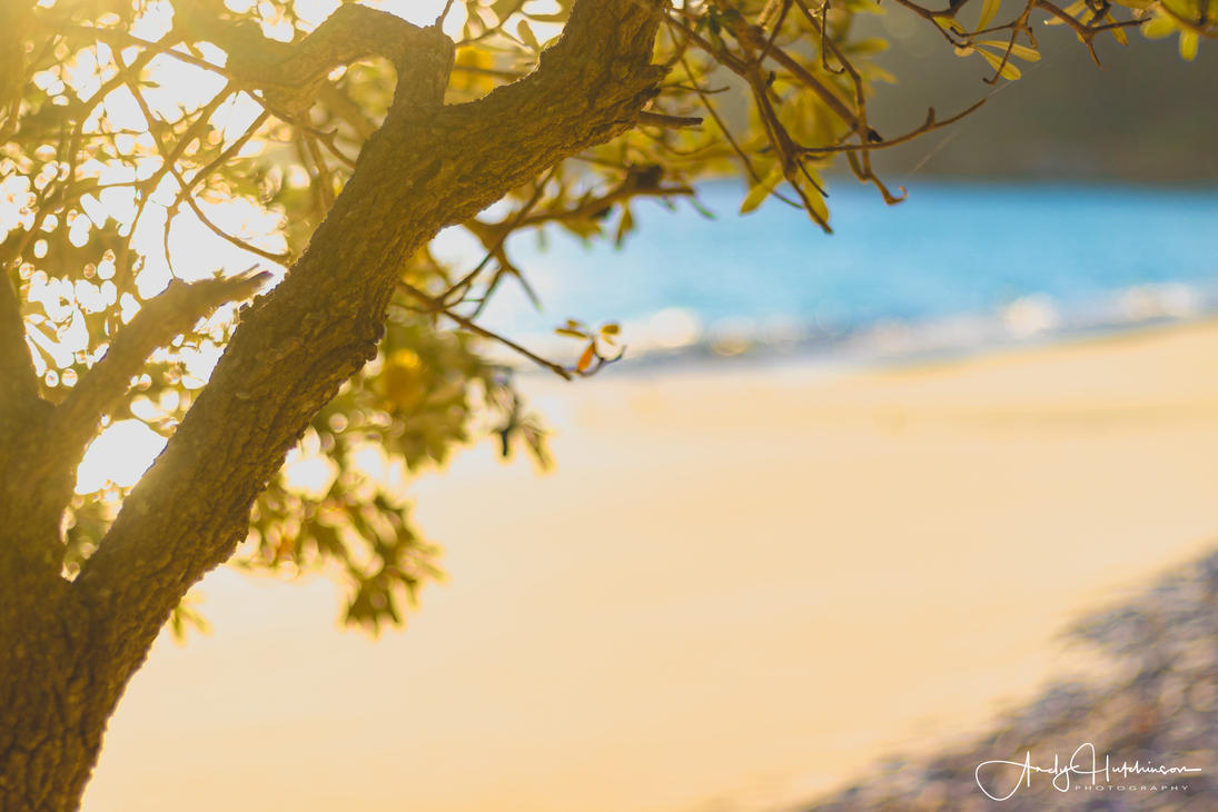 Murrays Beach by andyhutchinson