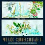 Summer Sabotage PNG Pack 01 by Sativa