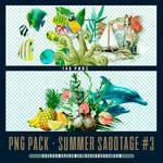 Summer Sabotage PNG Pack 03 by Sativa