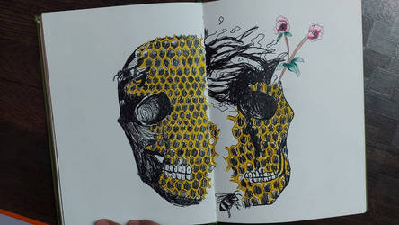 honeycomb skull