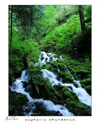 euphoric abundance by OneBloomPhotography