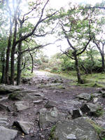 Rocky Path by gabriella-stock