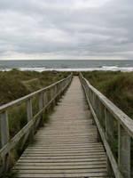 Wooden Path by gabriella-stock