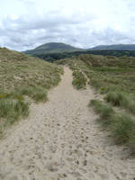 Beach Path by gabriella-stock