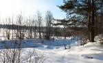 Nature. Winter. Russia. #5