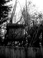 Mysterious Tree House by musicismylife2010