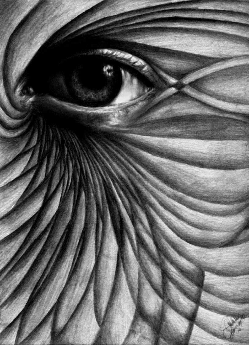 Arte Abstrata Ou Abstra    O