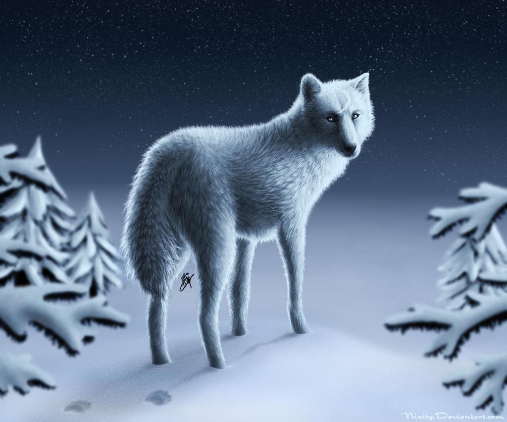 Ladarius Moon_Commission_by_Nixity