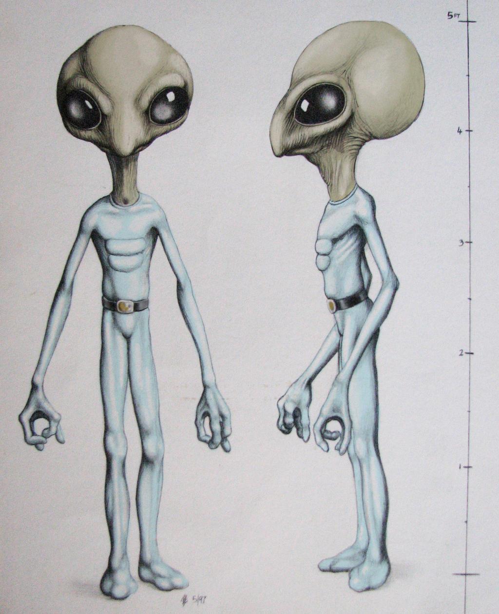 Allagash Alien
