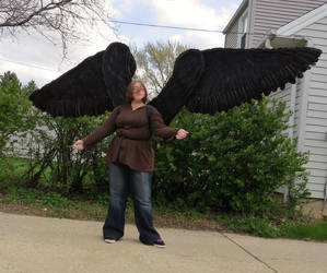 Articulated Wings Finished: Front view by Ninjakitten16