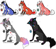 Bright Wolves