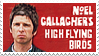 Noel Gallagher's High Flying Birds stamp by kemutora