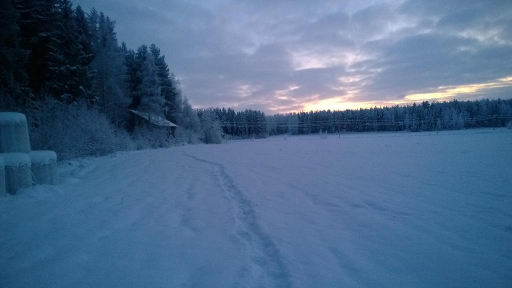 Snowday by Pamorina