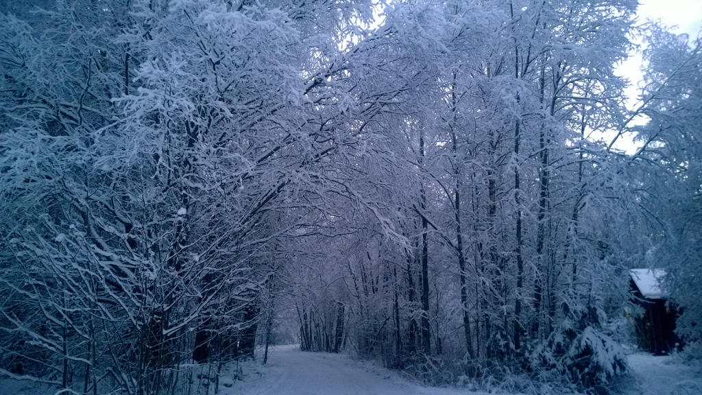 Lumisuus by Pamorina