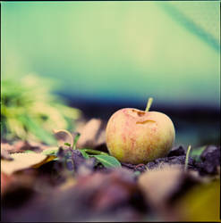 apple by quadratiges