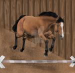 Commish for RvS-RiverineStables
