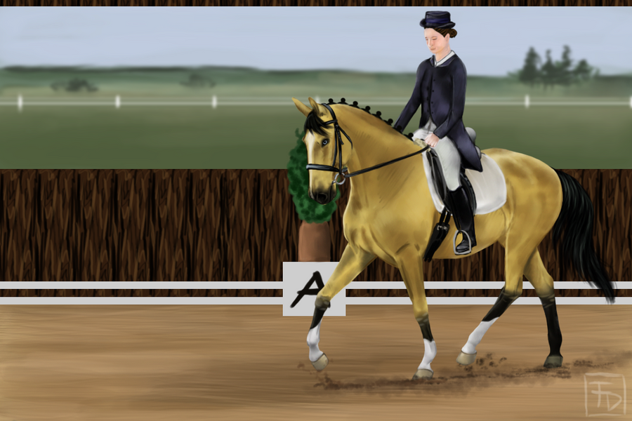 Jimmy Summer Dressage Show by FuenferDagegen